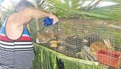 32e Foire agricole : cap sur la santé