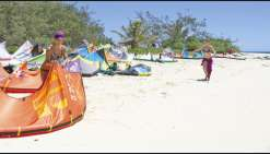 Vent de dynamisme chez les L Kite