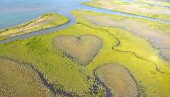 Le cœur de Voh est désormais connu dans le monde entier. Détail marquant, le chemin qui permet d'apercevoir par la terre la célébrité de Voh n'est pas indiqué.