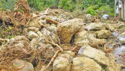 100 millions pour lutter contre les catastrophes naturelles