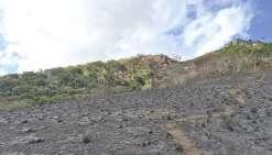 Le feu est maîtrisé à Dumbéa, mais pas à Kaala-Gomen
