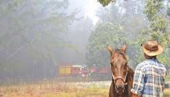 Deux feux menaçaient hier la propriété de Mathieu Cochard, ici avec son cheval. Dans la brousse, des pneus et des carcasses de voiture ont pris feu,  dégageant une épaisse fumée noire.