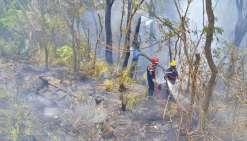 Entre vendredi et samedi, près d'une cinquantaine de pompiers sont restés mobilisés.  Le maximum vu les besoins de relève et les autres opérations dans le Grand Nouméa.