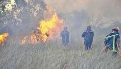 Cette année, le manque de moyens et d'effectif s'est fait sentir dans un grand nombre de communes, parfois  démunies face à des incendies particulièrement virulents.