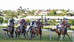 Monté par l'Australien Craig Luttrell, Pacifique du Cap (à droite)  a remporté la Casinos Coupe Clarke en 2017. Photo Archives LNC - J. Samperez