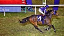 En triomphant, Lady Effort a remporté sa 3e victoire en quatre courses cette saison.         Photo Cyril Terrien