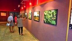 Mardi soir, les visiteurs ont découvert l'exposition lors du vernissage. Photo E.J.