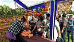 Le public est venu en nombre à la Fête de la mandarine et des fruits. Les visiteurs n'ont pas hésité à faire la queue pour acheter les mandarines d'Emma qui ont vite disparu des étals. Entre six et huit tonnes ont été vendues sur le site. A 700 F le kilo,