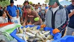 Les pêcheurs et amateurs de bossu doré sont attendus nombreux sur le site de la plage de Tanghy. Photo Archives N.B.