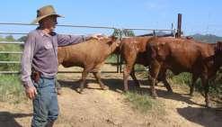 L'Ocef au service des éleveurs