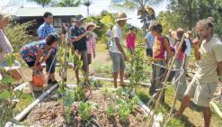 Les agriculteurs bio possèdent leur propre banque de semences