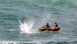 Un homme tué par un requin en Nouvelle-Zélande