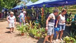 L'anthurium, superstar du dimanche,a attiré les amoureux des plantes