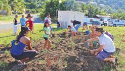 La mairie se lance dans « 100 projets pour le climat »