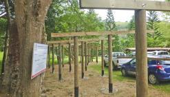 Rénovation en cours au marché
