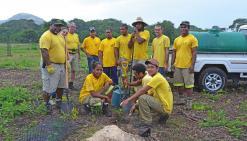 Cent arbres de plus dans la forêt sèche de Déva