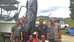 Un marlin bleu de 283 kilos