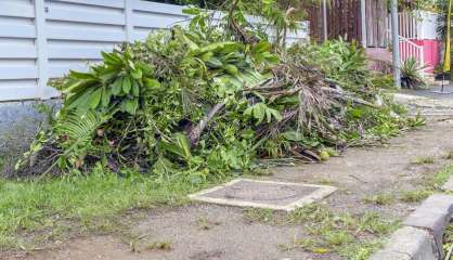 Mont-Dore: Le broyage des déchets verts à domicile testé à partir du 1erdécembre
