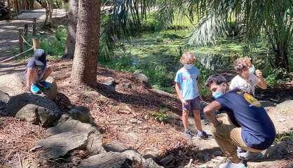 Des centres de loisirs accueillent les enfants du