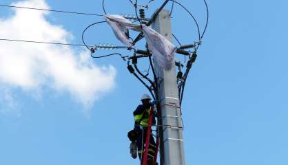 Encore 5800 foyers sans électricité, deux jours après le cyclone Niran