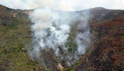Pour2019, le coût de la restauration écologique des incendies est estimé à 77milliards