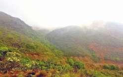 S'il offre un point de vue époustouflant côté mer, le Mont-Dore réserve aussi son lot de surprises lorsqu'on l'attaque de l'autre côté, le plus doux. Le chemin qui mène au sommet, soit 772 m, peut parfois même avoir un petit air d'Écosse.
