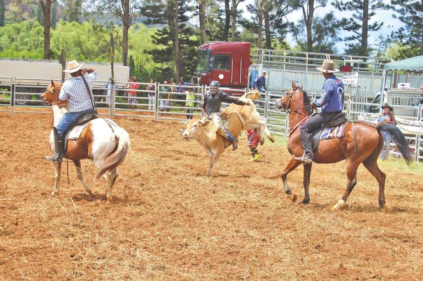 Monte sur chevaux puis monte sur bœufs, le rodéo, organisé en partenariat avec la Fédération calédonienne de rodéo sur le terrain de Do Néva, est un spectacle, parfois drôle et toujours impressionnant qui plaît beaucoup au public, qu'il soit connaisseur o