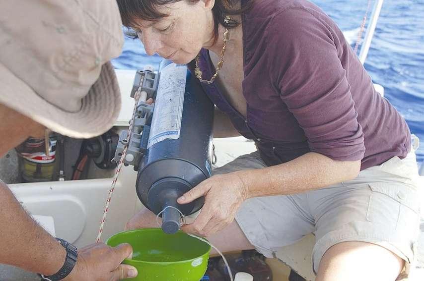 La 14e mission Spot a lieu cette semaine à bord de l'Alis, vaisseau de l'IRD. Le contexte de début de ceinture de feu du Pacifique permet au phytoplancton, qui apprécie les métaux lourds et le phosphate, de trouver les éléments suffisants pour réaliser le