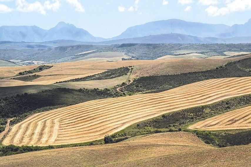 Le ministre australien de l'Intérieur, Peter Dutton, n'a pas vraiment usé de diplomatie. Mais les méthodes de la réforme agraire en Afrique du sud restent la question de fond.