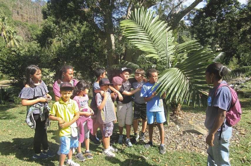 Les enfants ont découvert les différentes espèces de plantes endémiques ainsi que les plantes médicinales qui sont utilisées pour soigner.