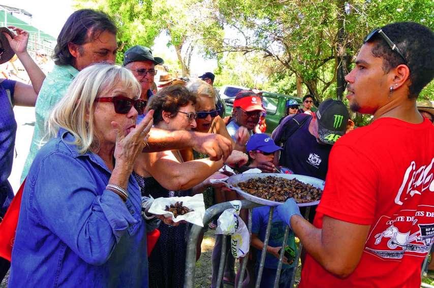 Les cent kilos d'animelles préparés par les bénévoles se sont littéralement arrachés en à peine quelques minutes…Photos Anthony Tejero