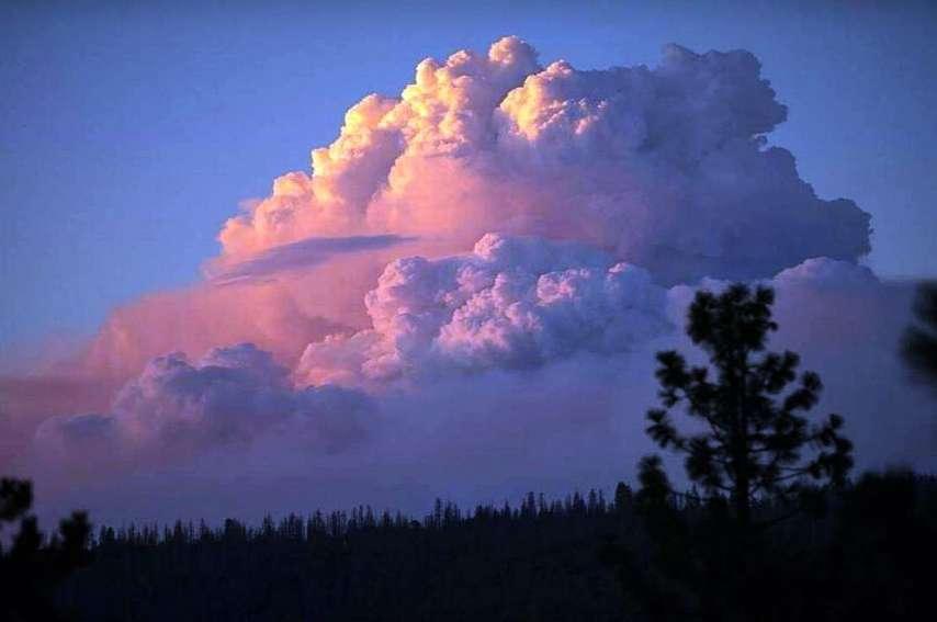 Paradoxe de ces incendies, un magnifique pyrocumulus de 9 kilomètres de haut est apparu au-dessus du parc national de Bunyip. En effet, ce nuage de la famille des cumulus se forme au-dessus d'une source de chaleur intense : volcans, incendies, usines etc.
