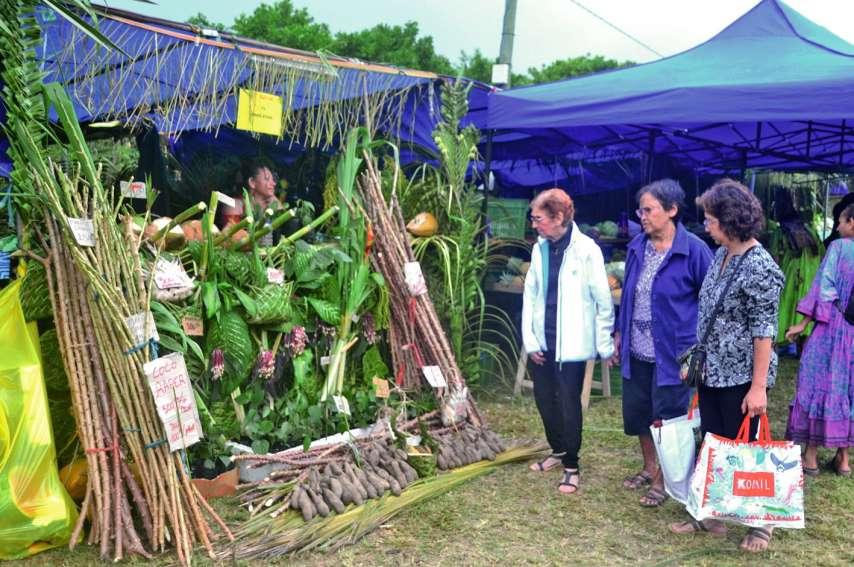 Les visiteurs n'avaient que l'embarras du choix, comme ici, sur le stand de Marie-Pierre Ty, originaire de Pindache. Elle a proposé du manioc javanais, des ambrevades présentées dans des paniers tressés ou encore des cocos verts servis avec une paille en