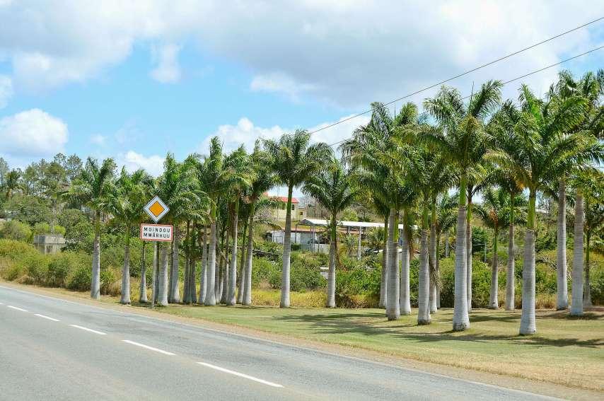 Depuis plusieurs semaines, l'Association des palmiers de Mwârhuu et la mairie s'affairent à préparer comme il se doit les 140 ans du village. Photos N.B.