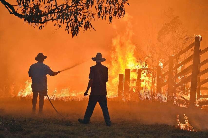 Généralement, moins de 2 % des forêts australiennes sont détruites chaque année par le feu. La saison 2019-2020 est un record.  AFP