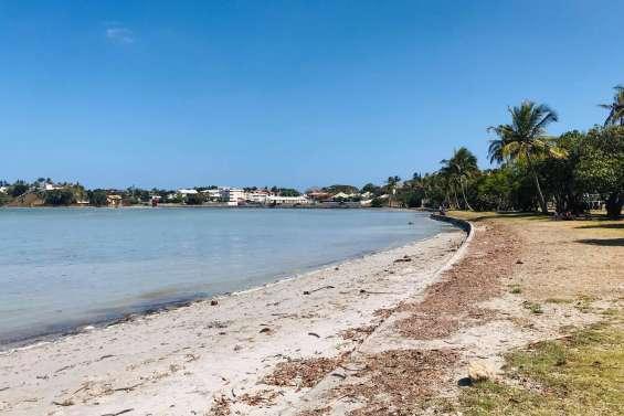 La plage de Magenta et la Côte Blanche sont interdites à la baignade, suspicion d'une pollution aux hydrocarbures