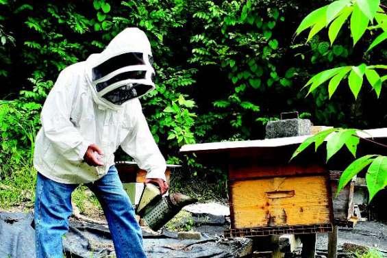 Manou, apiculteur à l'embouchure de la Tchamba