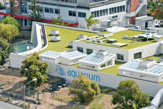 Malfaçons à l'Aquarium, la mairie demande 275 millions au titre des réparations