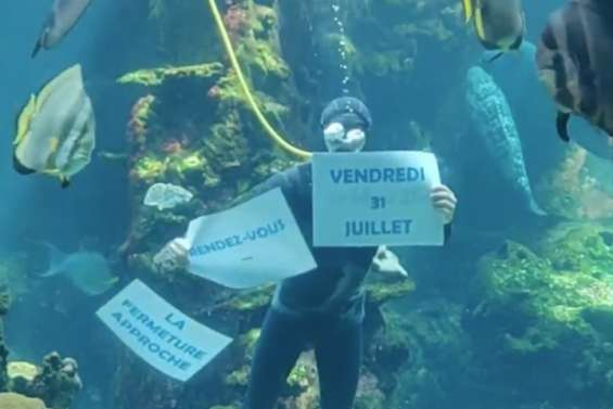 L'Aquarium des lagons, c'est ce vendredi… ou pas avant septembre 2021