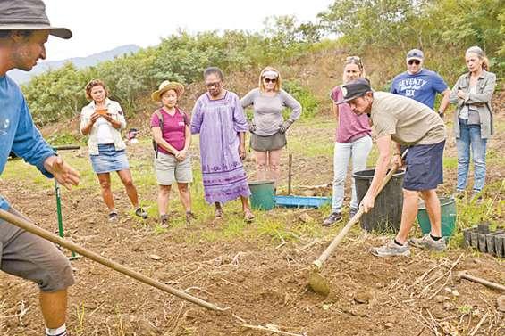L'agriculture urbaine rencontre un public enthousiaste à la pépinière municipale