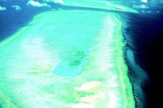 Nouvelle méthode pour sauver le corail