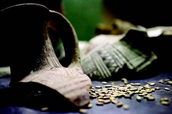 Ils recréent la « bière des pharaons » avec une levure de 3 000 ans