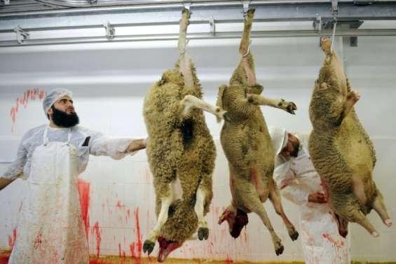 Abattage des animaux: les recommandations de la Commission d'enquête parlementaire