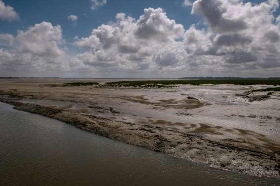 La baie de Somme, attention fragile !