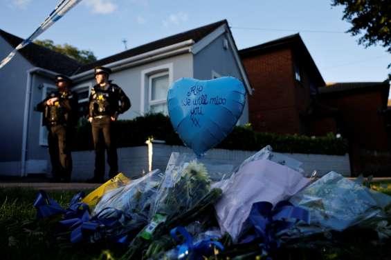 Grande-Bretagne: après le meurtre d'un député, la sécurité en question