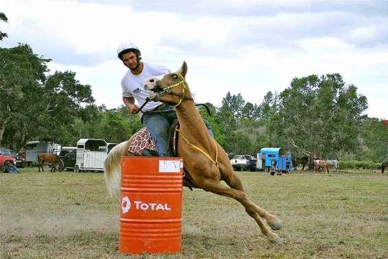 Les amateurs de chevaux ont rendez-vous à Ouégoa, samedi