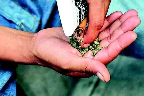 Sept décès imputés au cannabis synthétique