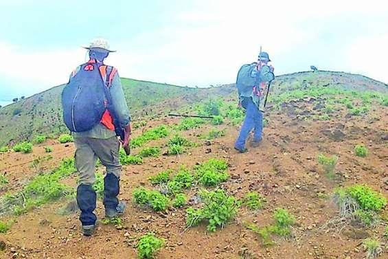 Des chasseurs actifs à Païta