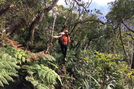 « Plus j'avance et plus je suis déterminé » : David Battie au 10e jour de sa traversée de Calédonie