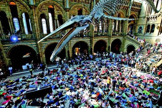 « Die-in » d'Extinction Rebellion dans un musée